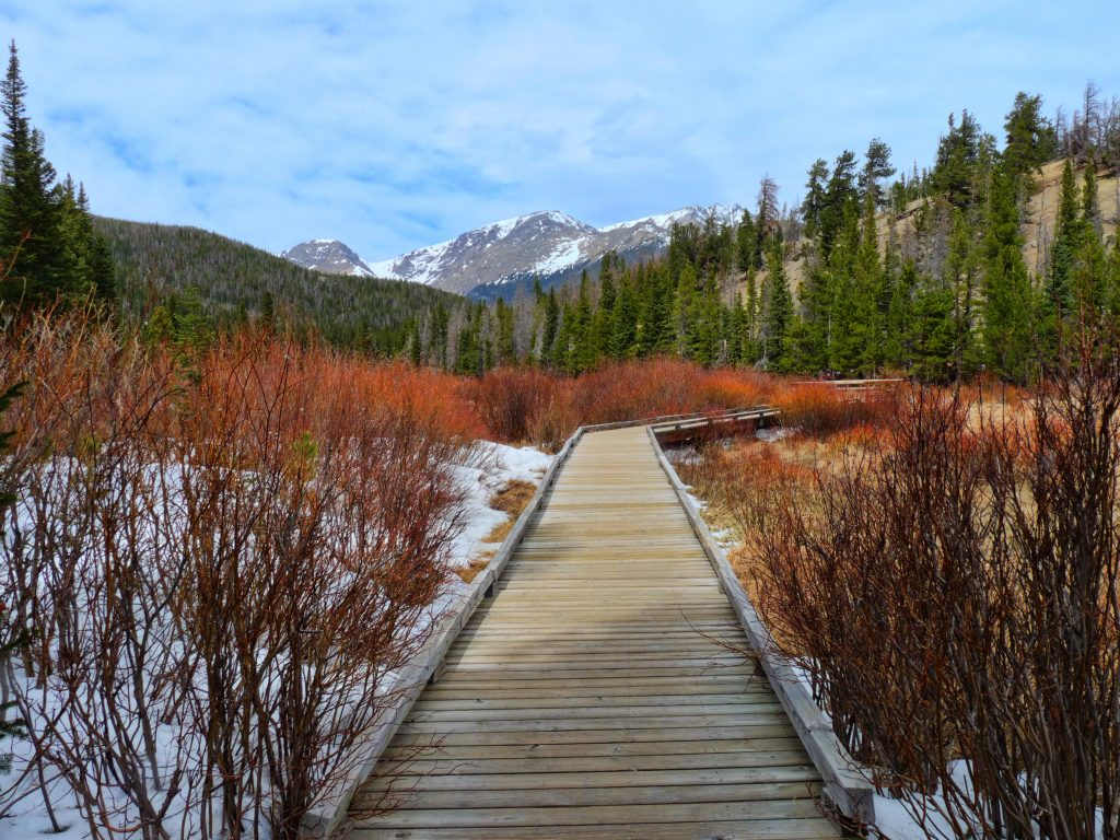 Path through Rocky Mountain National Park